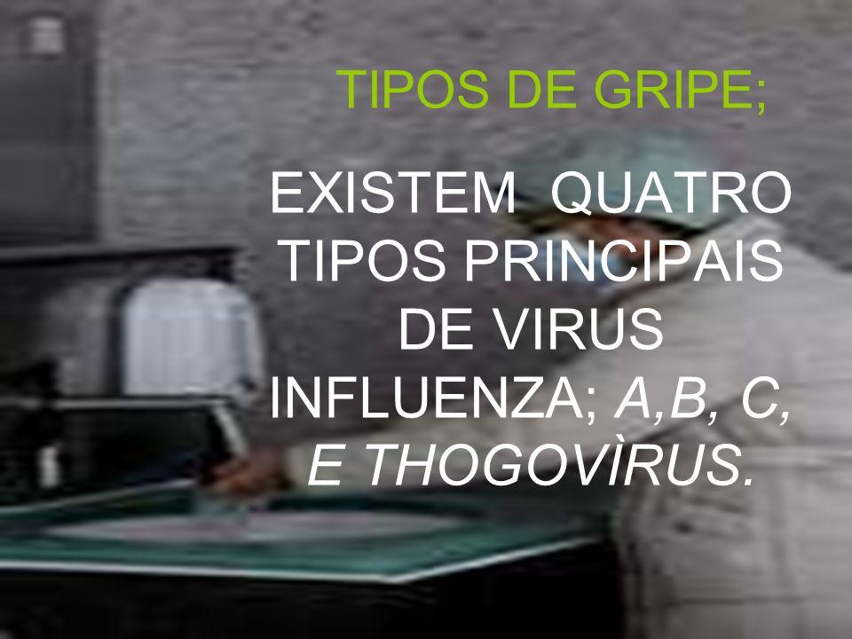 OS VÌRUS SÃO IDENTIFICADOS PELAS GLICOPROTEÌNAS QUE APRESENTÃO EM SEUS ENVELOPES LIPÍDICOS.