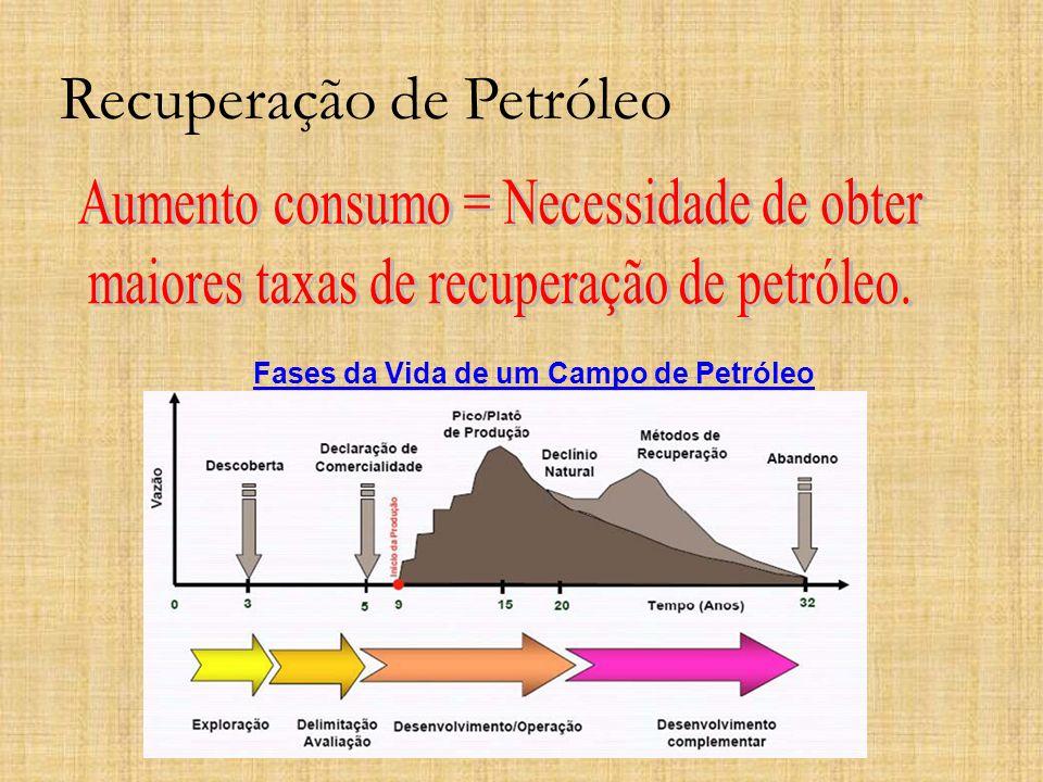 Recuperação de Petróleo Fases da Vida de um Campo de Petróleo