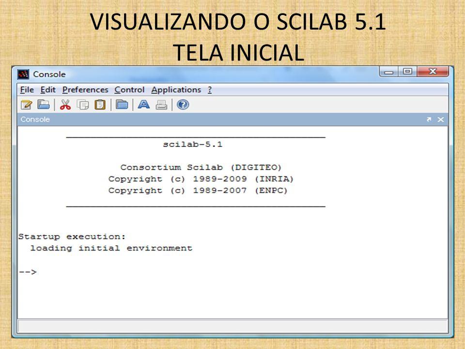 VISUALIZANDO O SCILAB 5.1 TELA INICIAL
