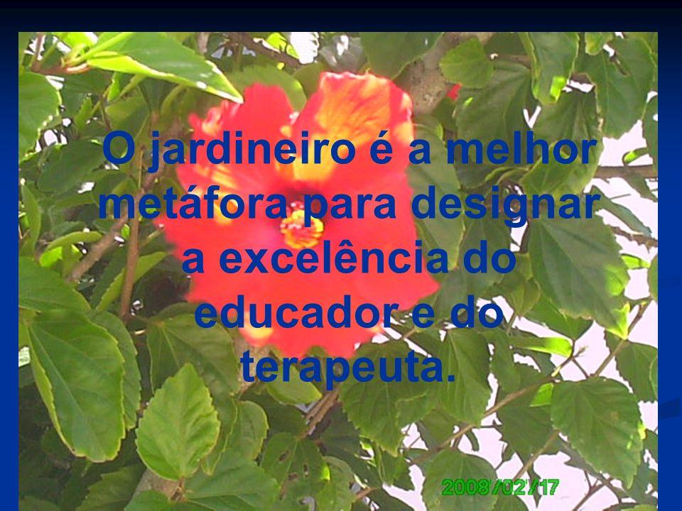 Cada aprendiz necessita ser respeitado na sua alteridade e no seu estilo próprio de aprender a aprender