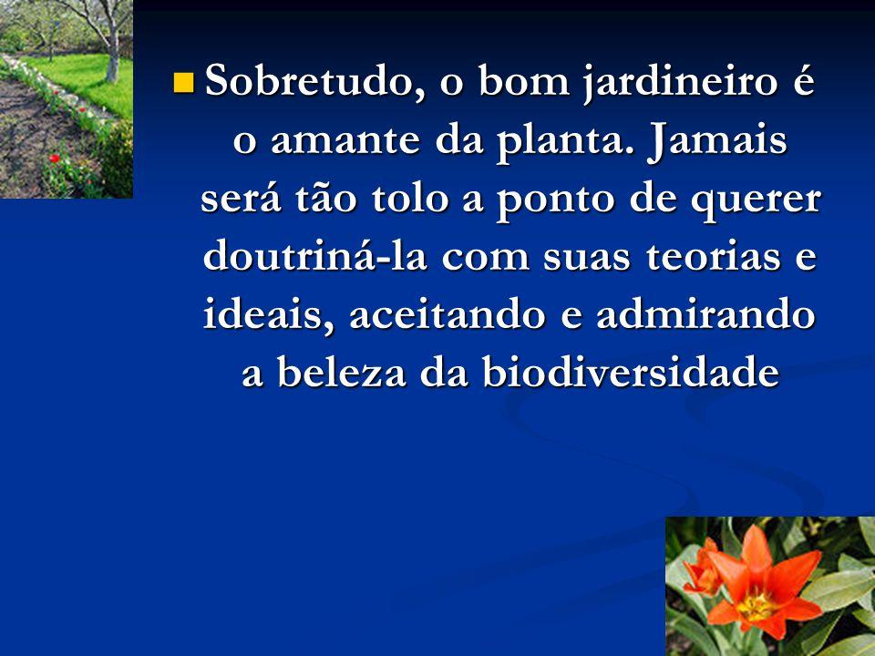 O bom jardineiro sabe que a planta só necessita de um solo fecundo, crescendo por si mesma, já que é dotada de um tropismo para ser o que é, buscando o que necessita no solo e direcionando-se para a luz do sol