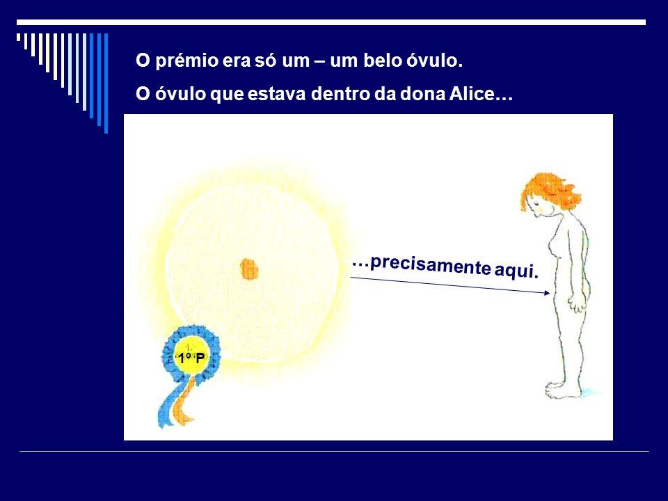 …precisamente aqui. O prémio era só um – um belo óvulo. O óvulo que estava dentro da dona Alice… 1º P