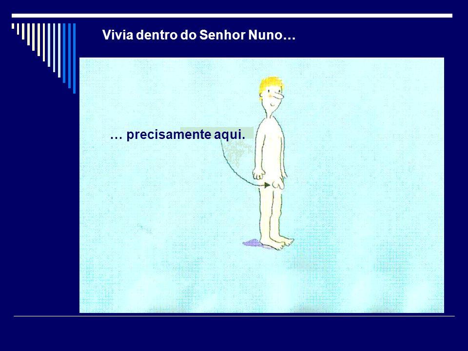 O 1º mapa mostrava o corpo do senhor Nuno.