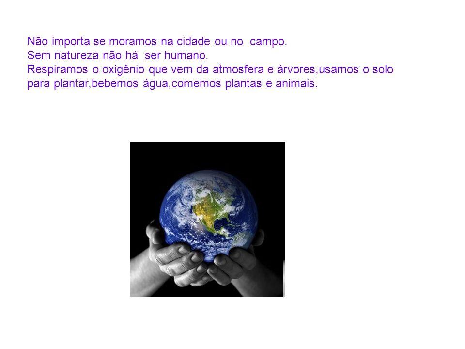 Não importa se moramos na cidade ou no campo. Sem natureza não há ser humano. Respiramos o oxigênio que vem da atmosfera e árvores,usamos o solo para