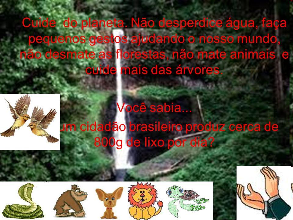 Cuide do planeta. Não desperdice água, faça pequenos gestos ajudando o nosso mundo, não desmate as florestas, não mate animais e cuide mais das árvore