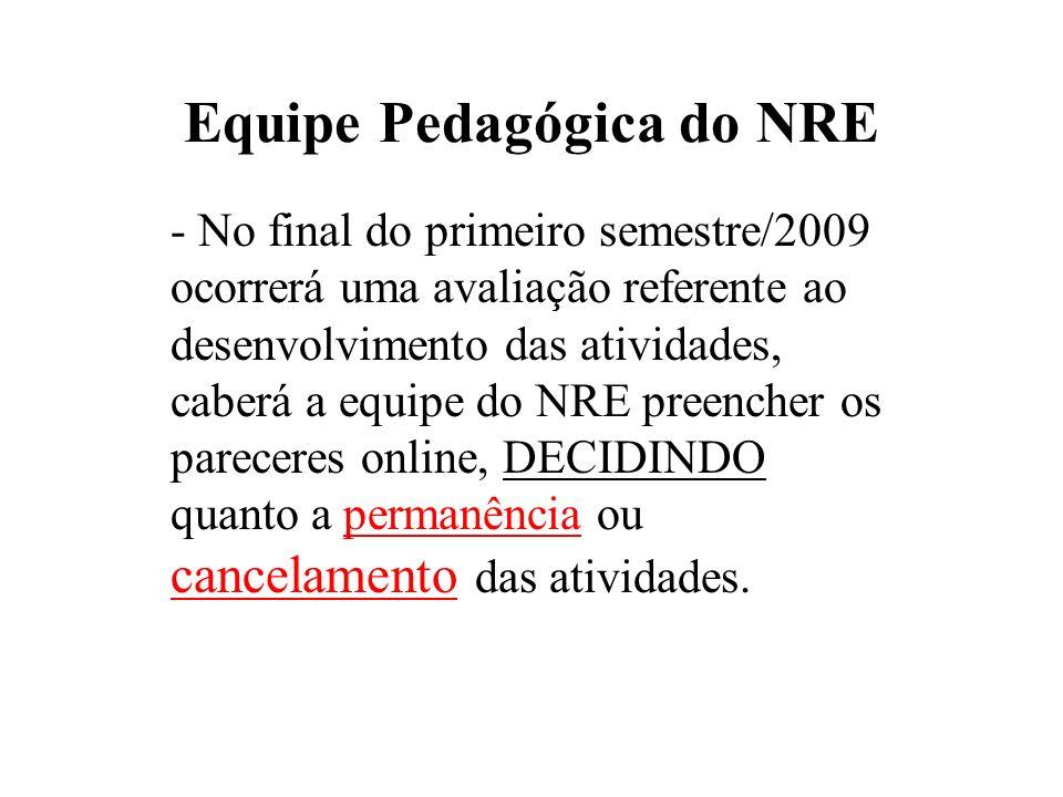 Equipe Pedagógica do NRE - No final do primeiro semestre/2009 ocorrerá uma avaliação referente ao desenvolvimento das atividades, caberá a equipe do N