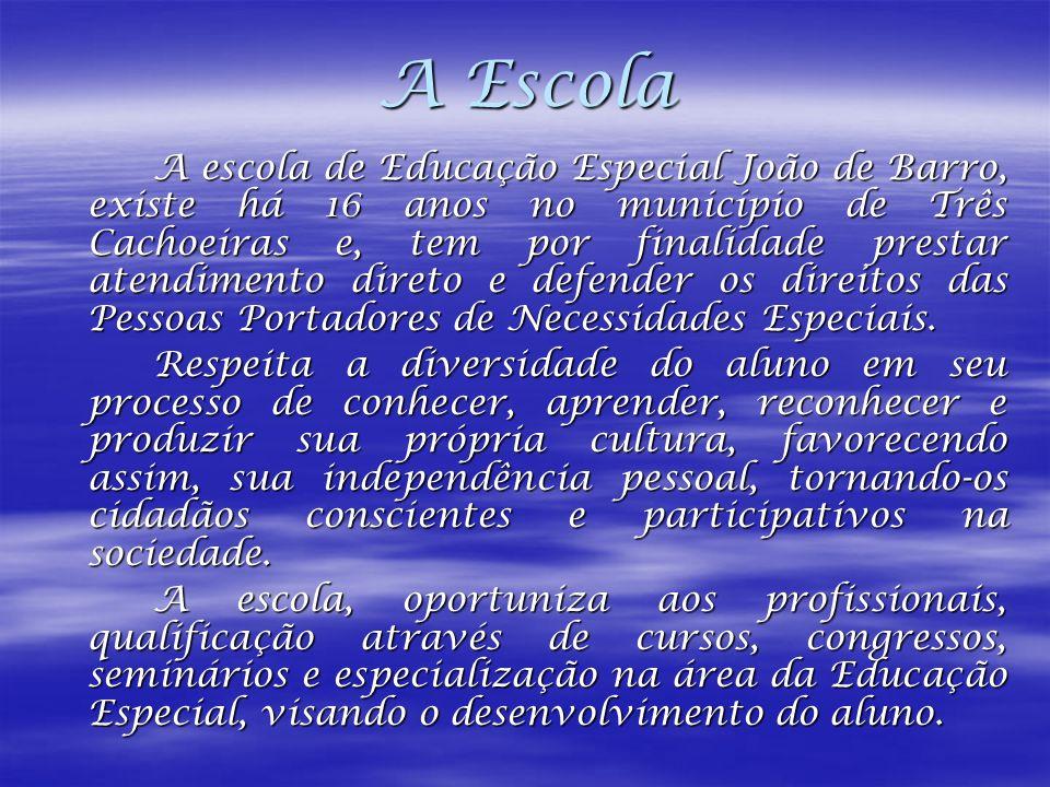 A Escola A escola de Educação Especial João de Barro, existe há 16 anos no município de Três Cachoeiras e, tem por finalidade prestar atendimento dire