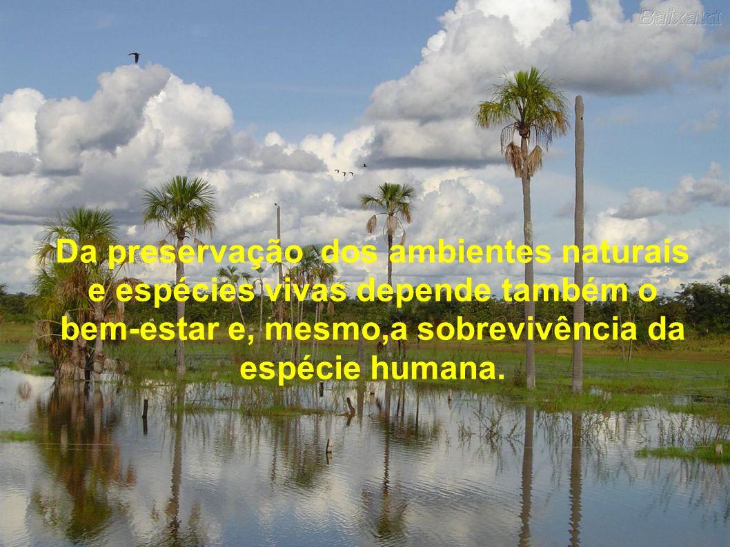 Da preservação dos ambientes naturais e espécies vivas depende também o bem-estar e, mesmo,a sobrevivência da espécie humana.