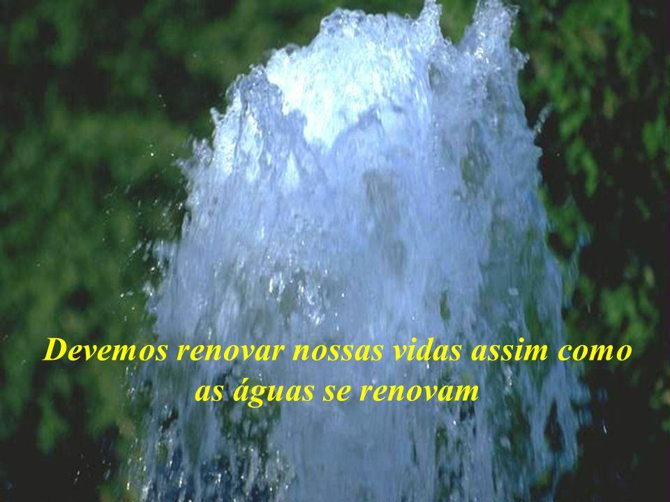 Devemos renovar nossas vidas assim como as águas se renovam