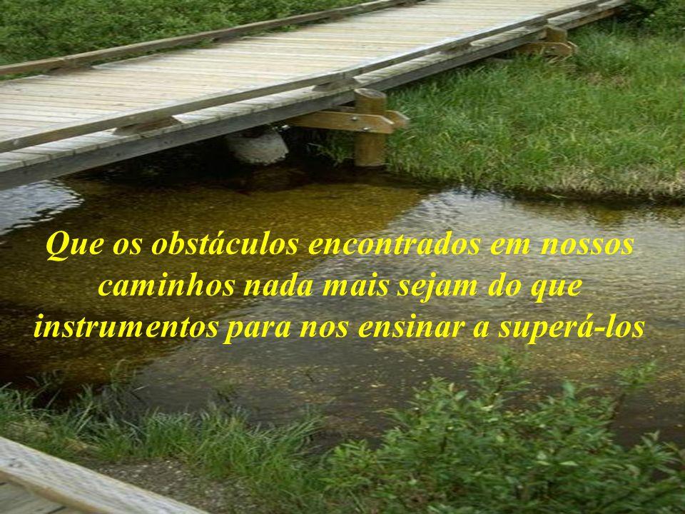 Que os obstáculos encontrados em nossos caminhos nada mais sejam do que instrumentos para nos ensinar a superá-los
