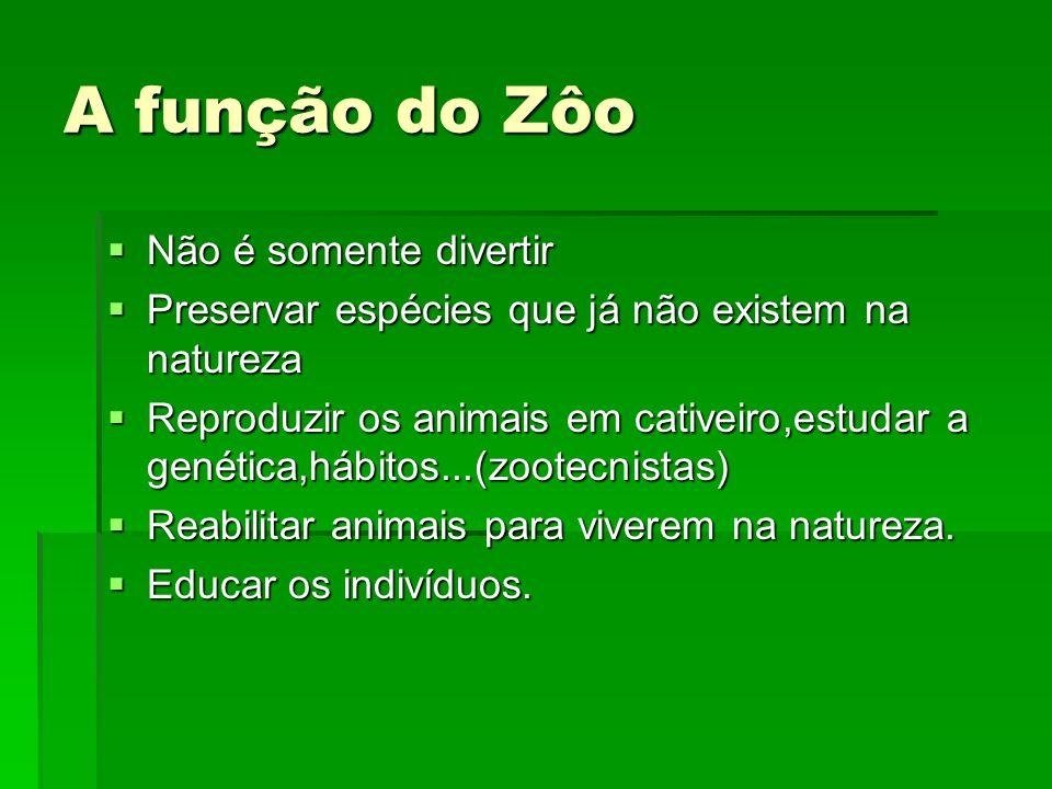 A função do Zôo Não é somente divertir Não é somente divertir Preservar espécies que já não existem na natureza Preservar espécies que já não existem