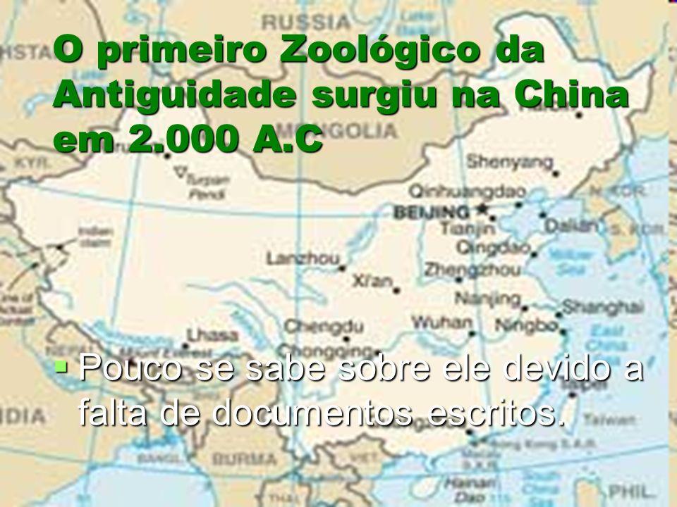 O primeiro Zoológico da Antiguidade surgiu na China em 2.000 A.C Pouco se sabe sobre ele devido a falta de documentos escritos. Pouco se sabe sobre el
