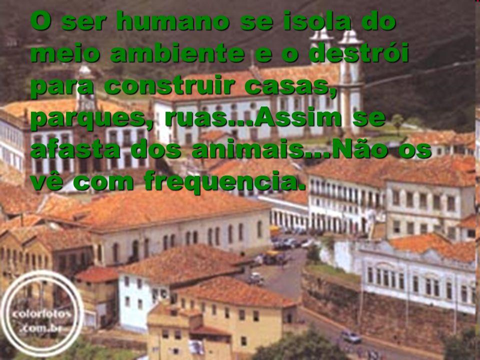 O ser humano se isola do meio ambiente e o destrói para construir casas, parques, ruas...Assim se afasta dos animais...Não os vê com frequencia.