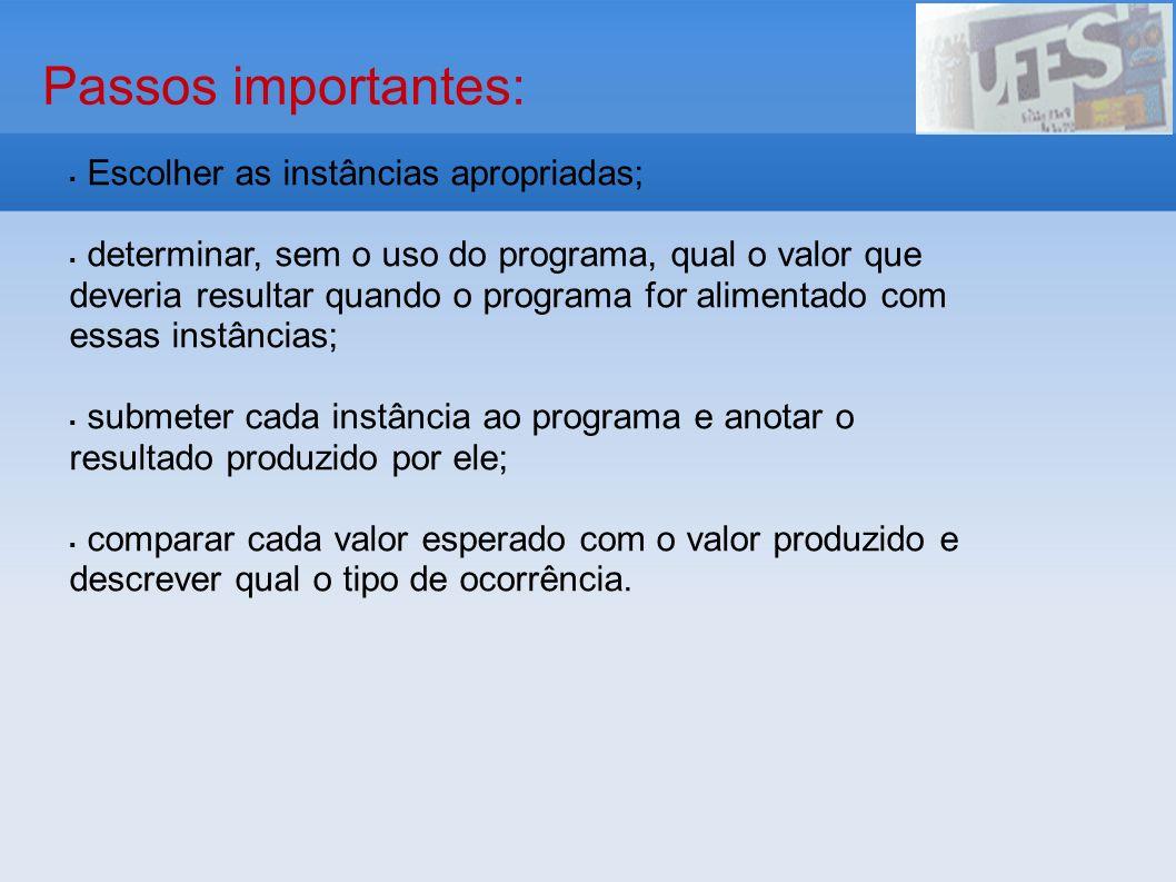 Passos importantes: Escolher as instâncias apropriadas; determinar, sem o uso do programa, qual o valor que deveria resultar quando o programa for ali