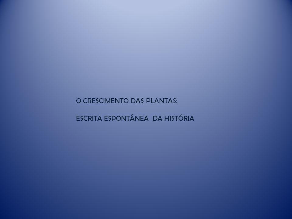 O CRESCIMENTO DAS PLANTAS: ESCRITA ESPONTÂNEA DA HISTÓRIA