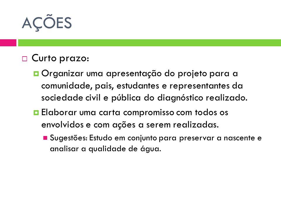 AÇÕES Curto prazo: Organizar uma apresentação do projeto para a comunidade, pais, estudantes e representantes da sociedade civil e pública do diagnóst