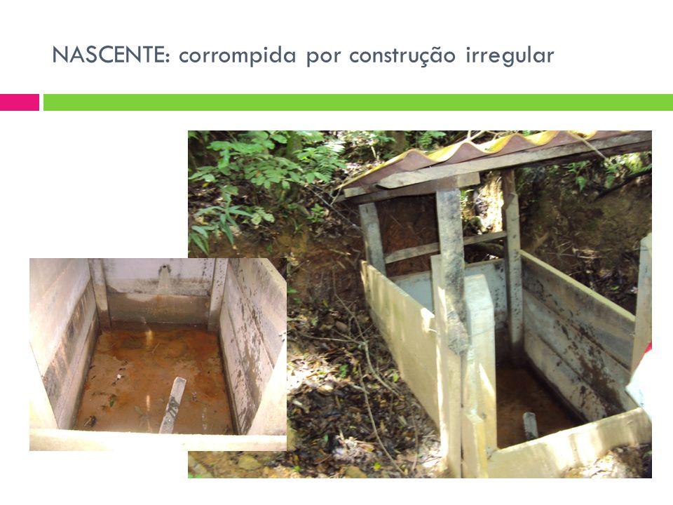 AÇÕES Longo prazo: Conscientização de todos envolvidos Saneamento básico da comunidade