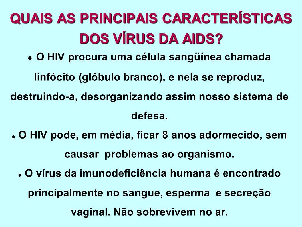 QUAIS AS PRINCIPAIS CARACTERÍSTICAS DOS VÍRUS DA AIDS? O HIV procura uma célula sangüínea chamada linfócito (glóbulo branco), e nela se reproduz, dest