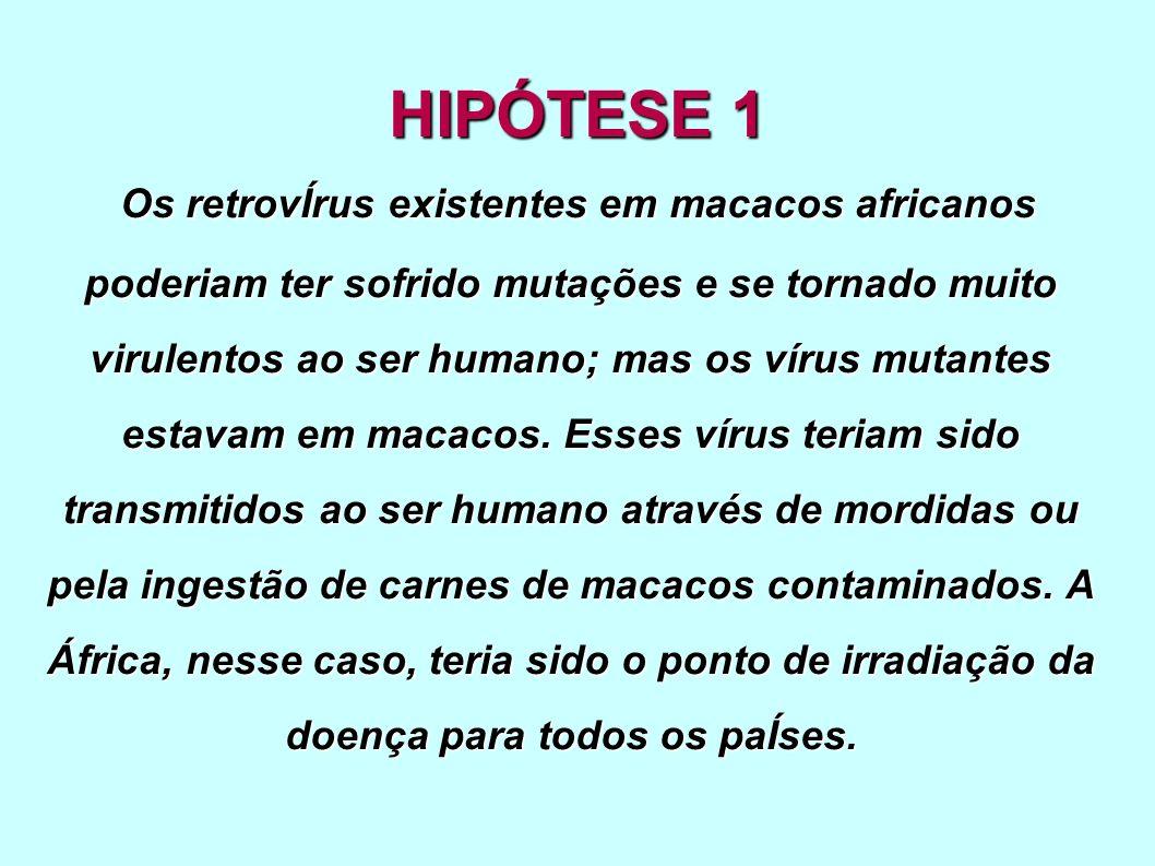 HIPÓTESE 1 Os retrovÍrus existentes em macacos africanos poderiam ter sofrido mutações e se tornado muito virulentos ao ser humano; mas os vírus mutan