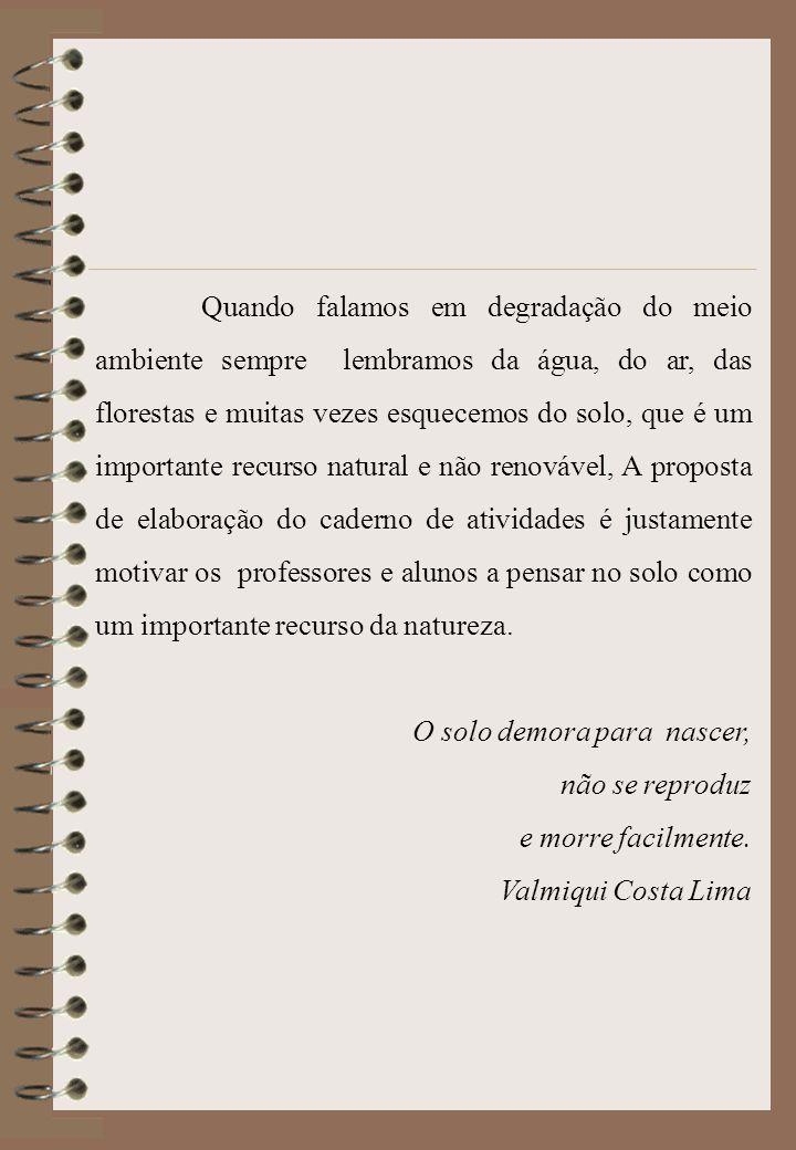 Disciplinas envolvidas Português Matemática História Geografia Química Física