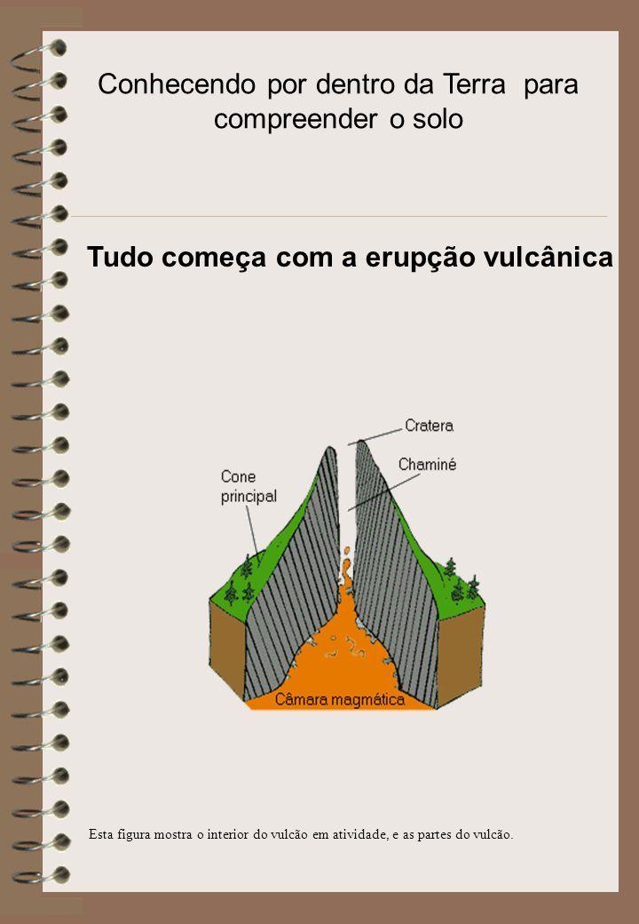 É a denominação que se dá ao material mineral ou orgânico a partir dos quais os solos se desenvolvem.
