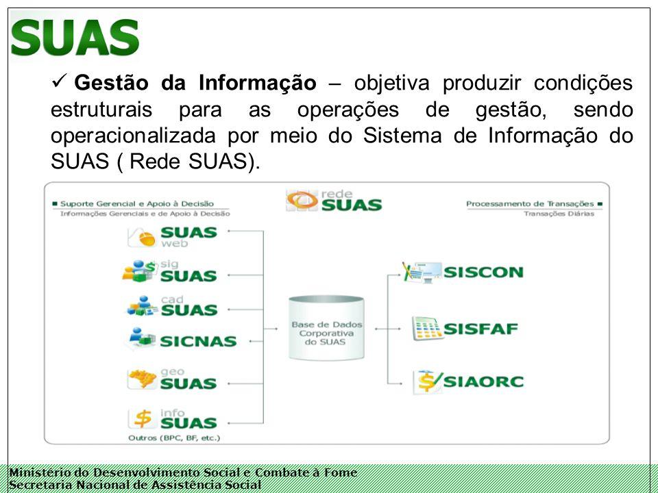 Ministério do Desenvolvimento Social e Combate à Fome Secretaria Nacional de Assistência Social Gestão da Informação – objetiva produzir condições estruturais para as operações de gestão, sendo operacionalizada por meio do Sistema de Informação do SUAS ( Rede SUAS).