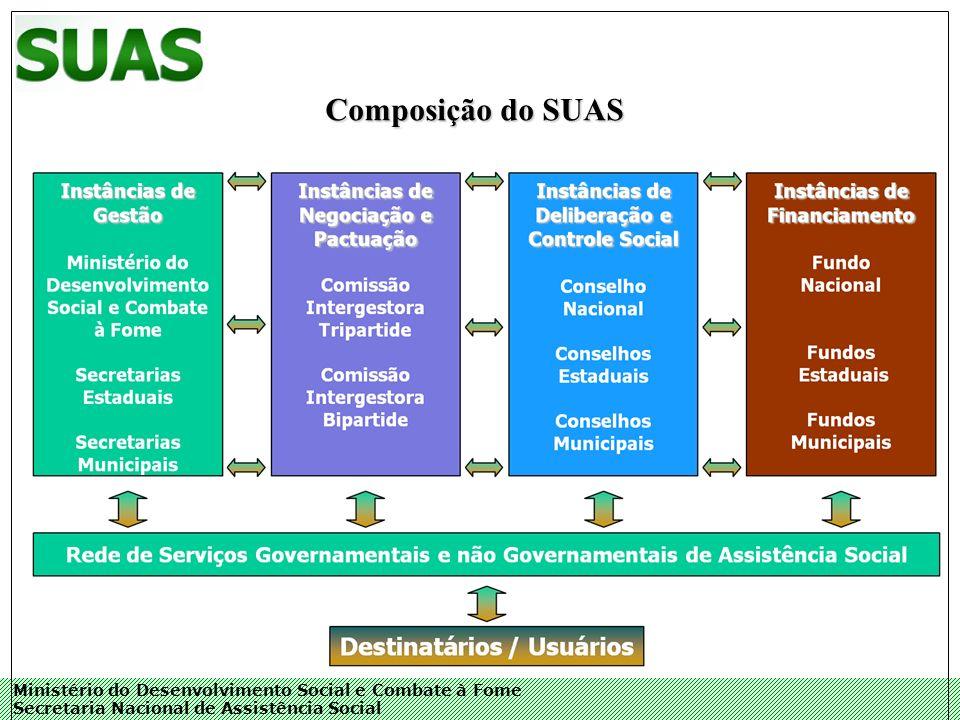 Ministério do Desenvolvimento Social e Combate à Fome Secretaria Nacional de Assistência Social Composição do SUAS