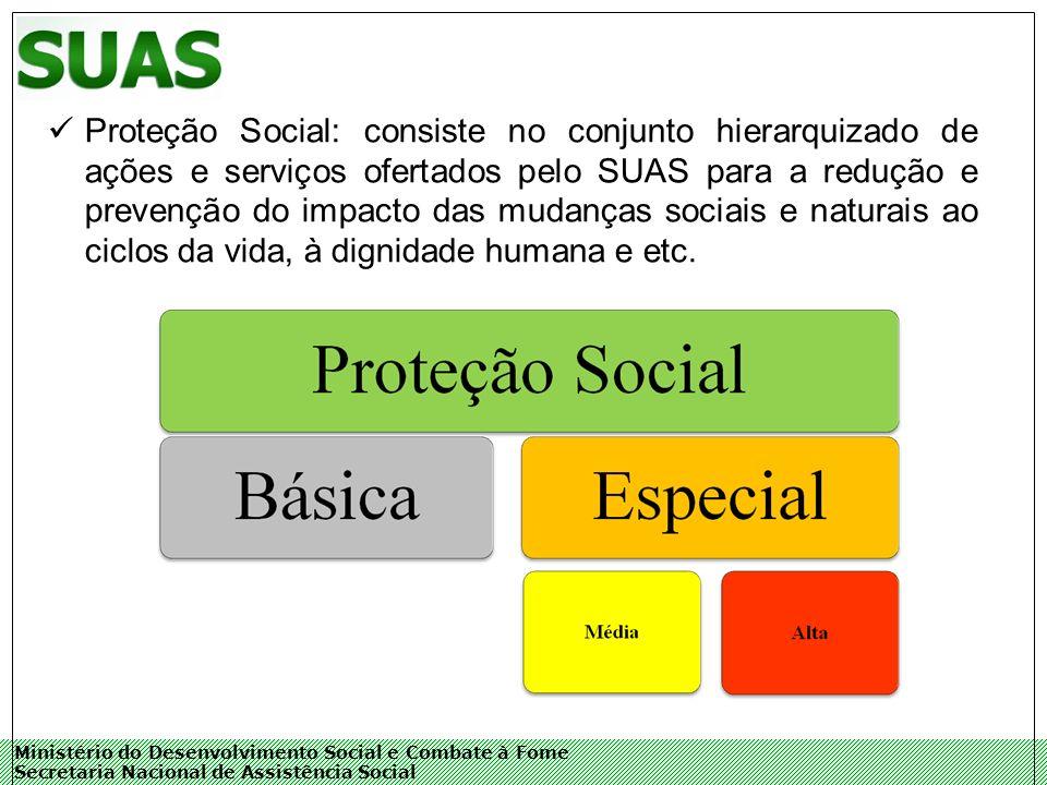 Ministério do Desenvolvimento Social e Combate à Fome Secretaria Nacional de Assistência Social Proteção Social: consiste no conjunto hierarquizado de ações e serviços ofertados pelo SUAS para a redução e prevenção do impacto das mudanças sociais e naturais ao ciclos da vida, à dignidade humana e etc.