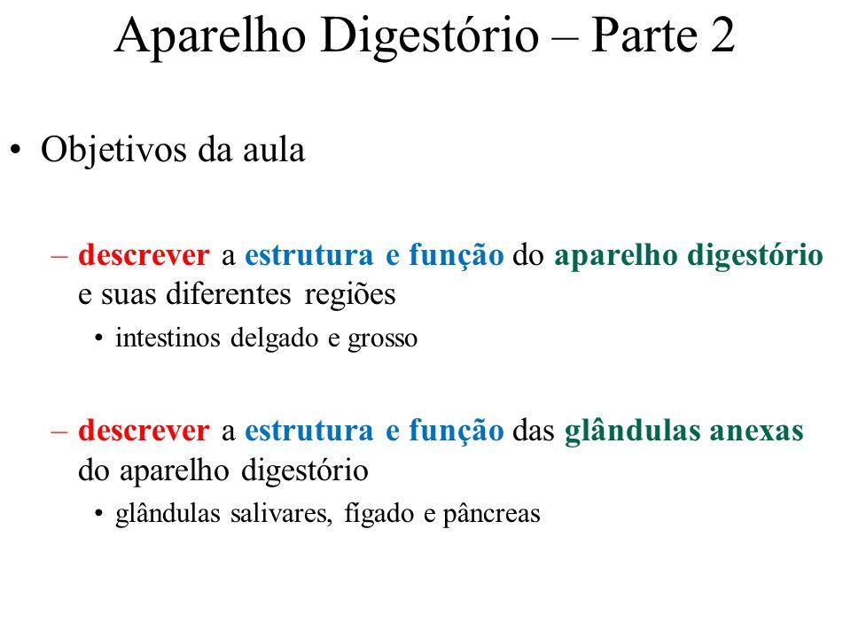 Aparelho Digestório – Parte 2 Objetivos da aula –descrever a estrutura e função do aparelho digestório e suas diferentes regiões intestinos delgado e