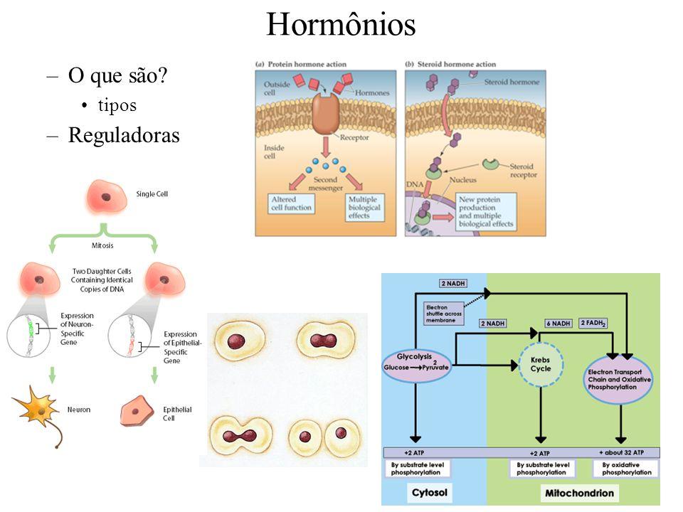 5 Controle Hormônios condições alteradas alteração detectada mecanismo de correção ativado condições corrigidas mecanismo de correção inativado