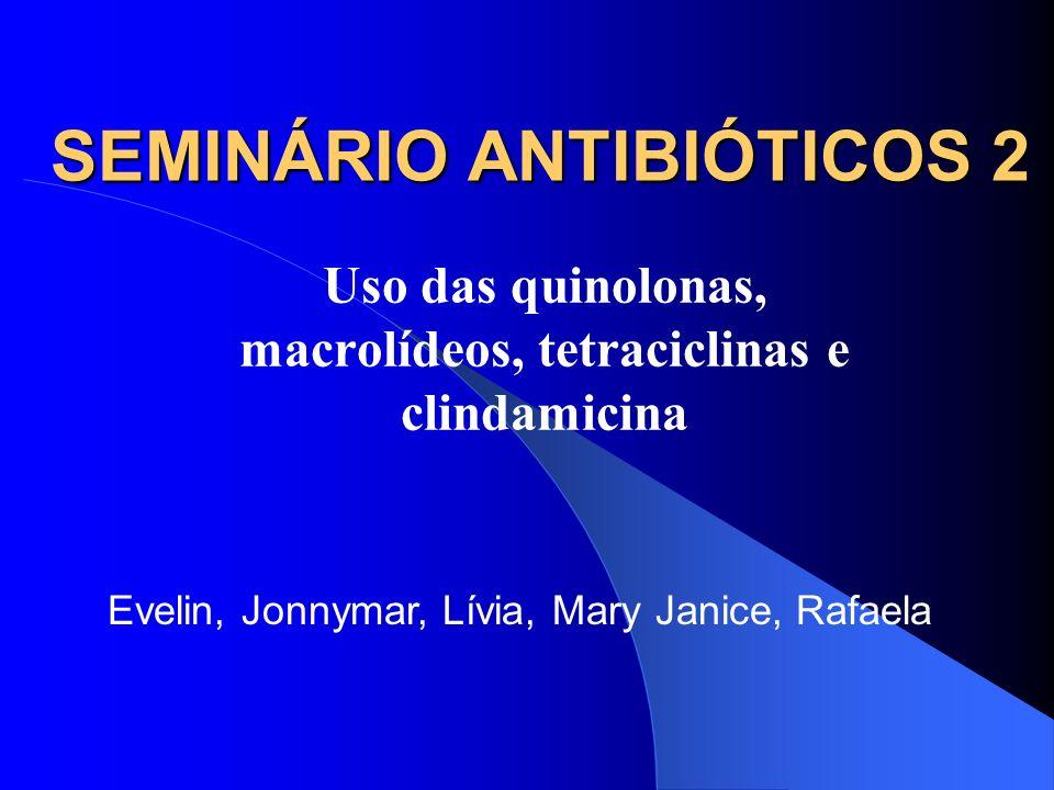 SEMINÁRIO ANTIBIÓTICOS 2 Uso das quinolonas, macrolídeos, tetraciclinas e clindamicina Evelin, Jonnymar, Lívia, Mary Janice, Rafaela