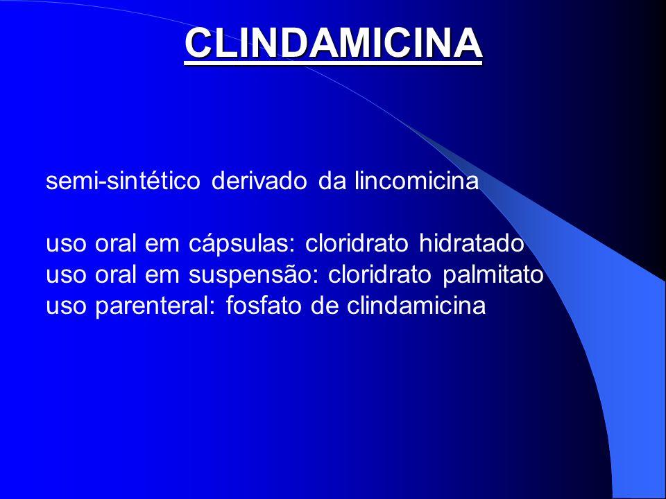 CLINDAMICINA semi-sintético derivado da lincomicina uso oral em cápsulas: cloridrato hidratado uso oral em suspensão: cloridrato palmitato uso parente