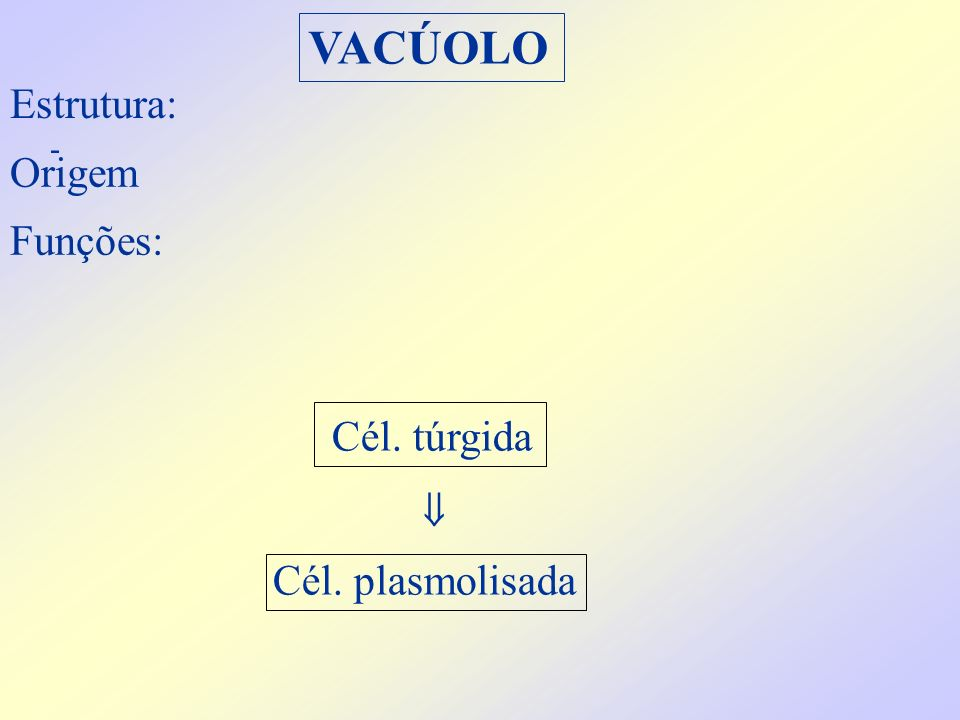 VACÚOLO Estrutura: - Funções: Origem Cél. plasmolisada Cél. túrgida