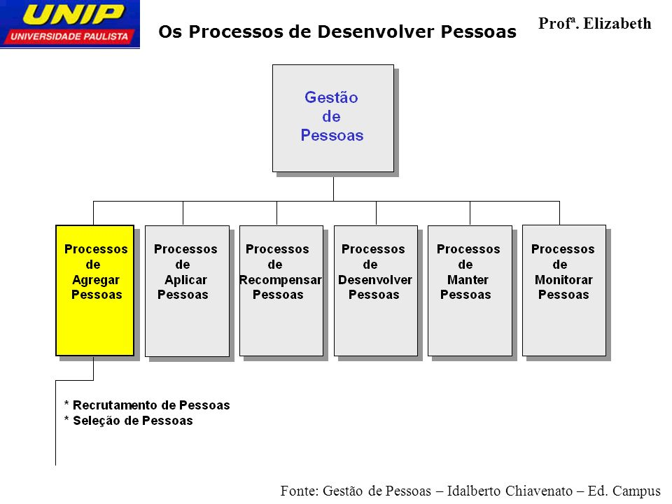 2 Os Processos de Desenvolver Pessoas Profª. Elizabeth Fonte: Gestão de Pessoas – Idalberto Chiavenato – Ed. Campus