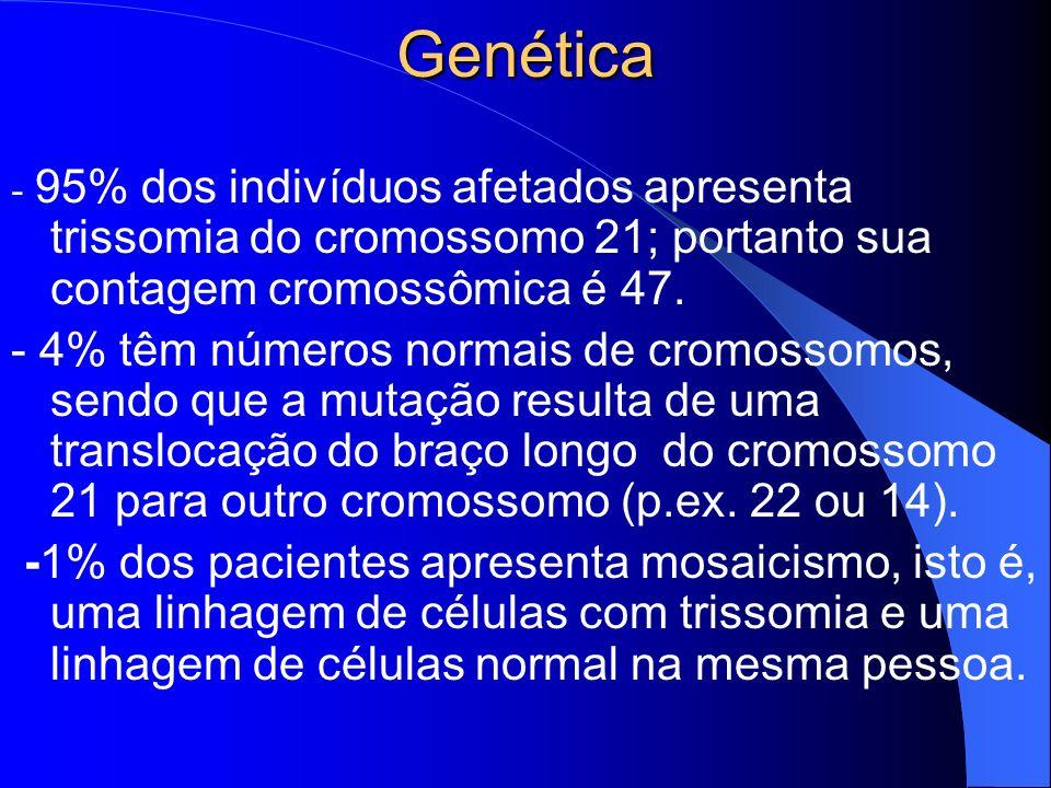 Genética - 95% dos indivíduos afetados apresenta trissomia do cromossomo 21; portanto sua contagem cromossômica é 47. - 4% têm números normais de crom