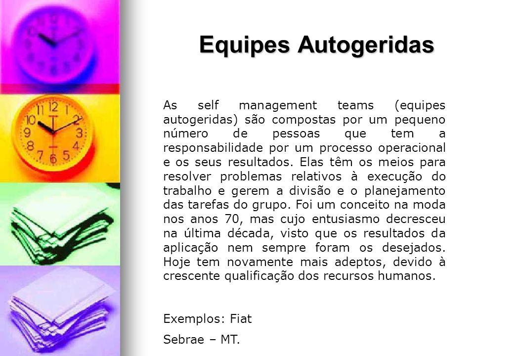 Equipes Autogeridas As self management teams (equipes autogeridas) são compostas por um pequeno número de pessoas que tem a responsabilidade por um pr