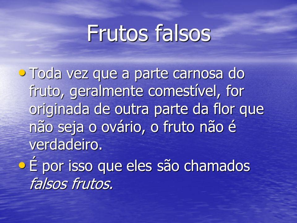 Frutos falsos A maçã e o morango, por exemplo, são falsos frutos, porque a sua porção carnosa se origina do receptáculo da flor.