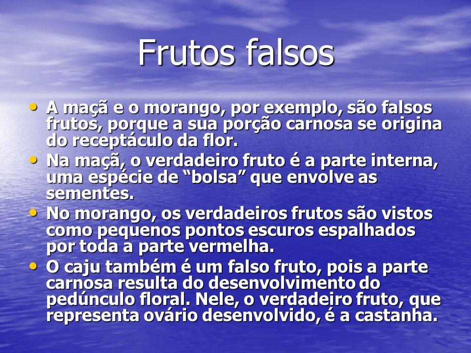 Frutos falsos A maçã e o morango, por exemplo, são falsos frutos, porque a sua porção carnosa se origina do receptáculo da flor. A maçã e o morango, p