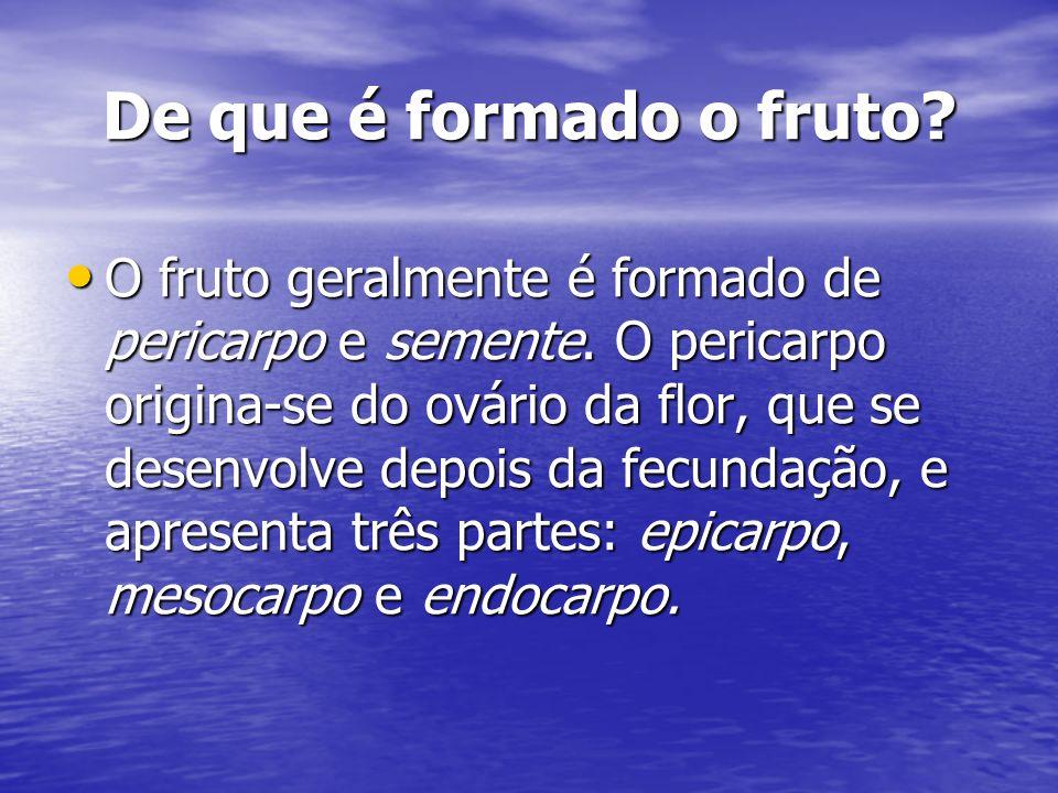 De que é formado o fruto? O fruto geralmente é formado de pericarpo e semente. O pericarpo origina-se do ovário da flor, que se desenvolve depois da f