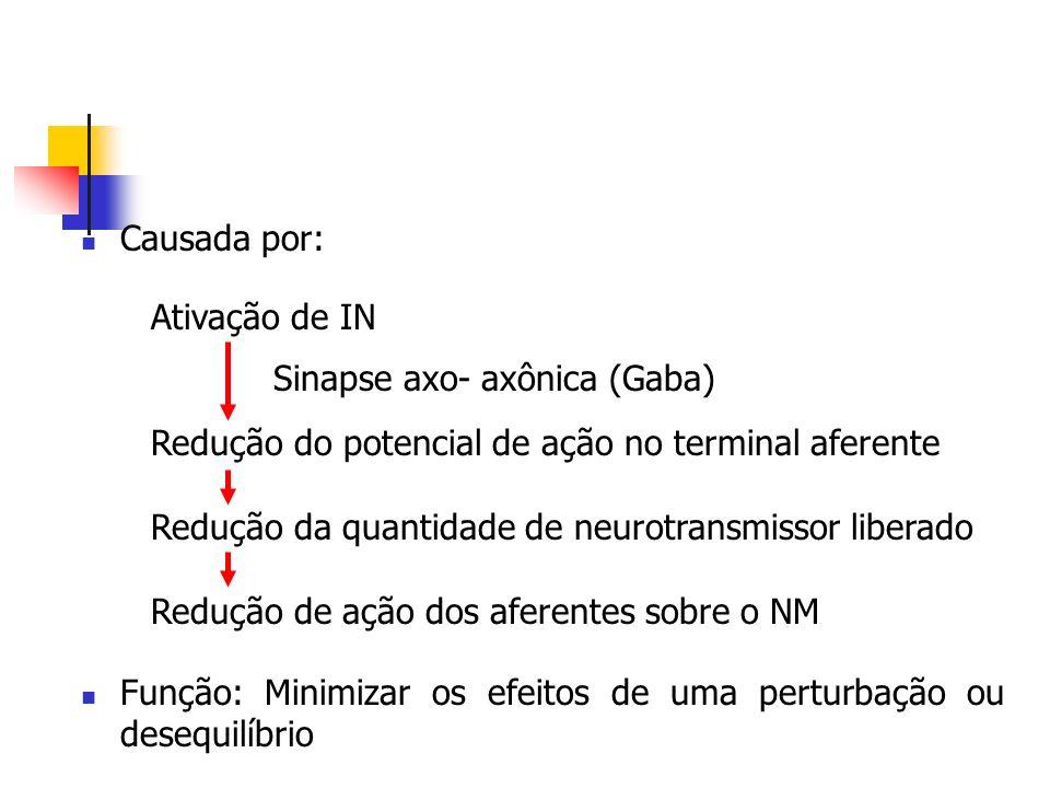 Causada por: Função: Minimizar os efeitos de uma perturbação ou desequilíbrio Ativação de IN Redução do potencial de ação no terminal aferente Redução
