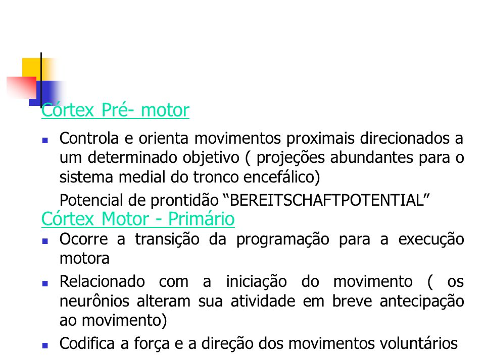 Controla e orienta movimentos proximais direcionados a um determinado objetivo ( projeções abundantes para o sistema medial do tronco encefálico) Pote