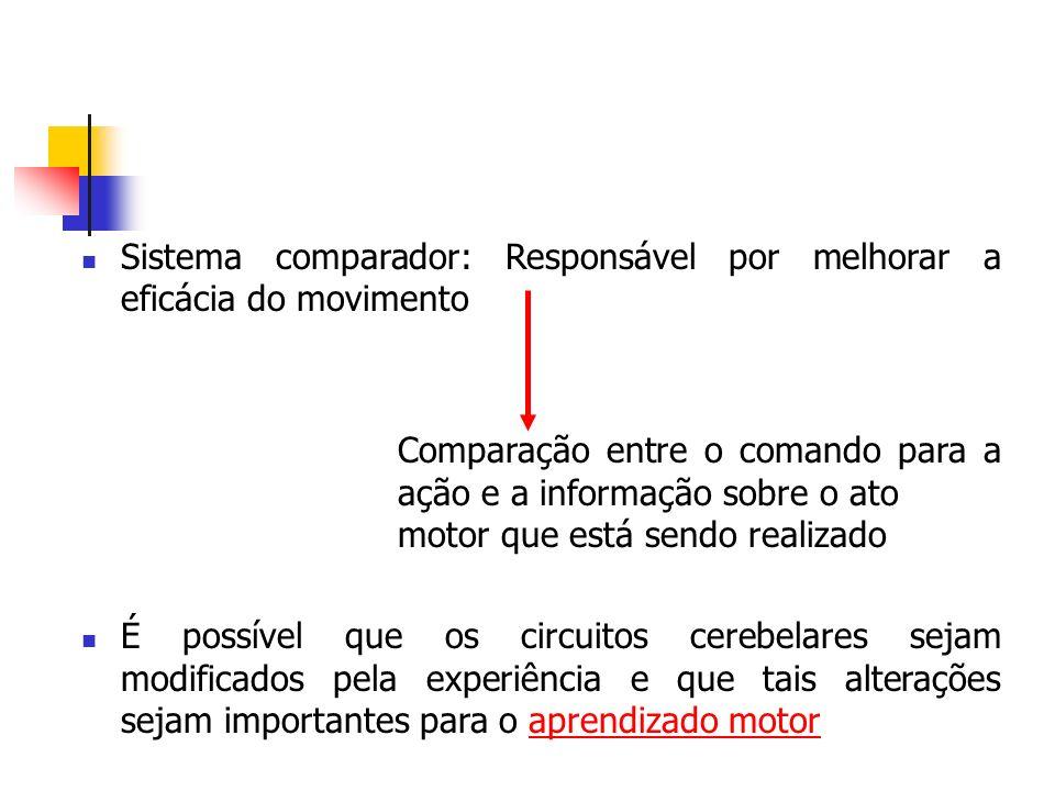 Sistema comparador: Responsável por melhorar a eficácia do movimento Comparação entre o comando para a ação e a informação sobre o ato motor que está