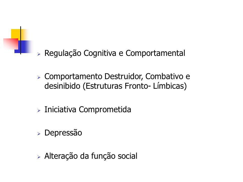 Regulação Cognitiva e Comportamental Comportamento Destruidor, Combativo e desinibido (Estruturas Fronto- Límbicas) Iniciativa Comprometida Depressão