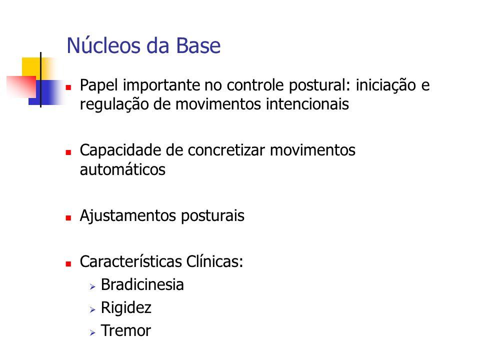 Núcleos da Base Papel importante no controle postural: iniciação e regulação de movimentos intencionais Capacidade de concretizar movimentos automátic