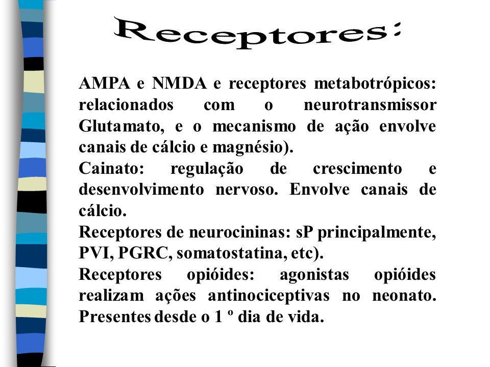 AMPA e NMDA e receptores metabotrópicos: relacionados com o neurotransmissor Glutamato, e o mecanismo de ação envolve canais de cálcio e magnésio). Ca