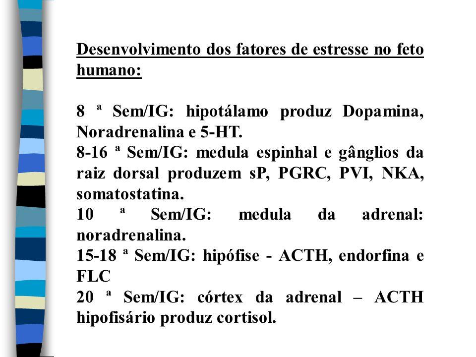 Desenvolvimento dos fatores de estresse no feto humano: 8 ª Sem/IG: hipotálamo produz Dopamina, Noradrenalina e 5-HT. 8-16 ª Sem/IG: medula espinhal e