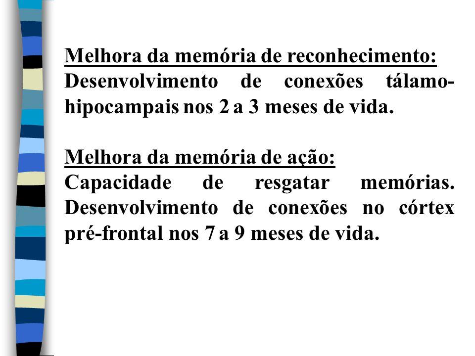 Melhora da memória de reconhecimento: Desenvolvimento de conexões tálamo- hipocampais nos 2 a 3 meses de vida. Melhora da memória de ação: Capacidade
