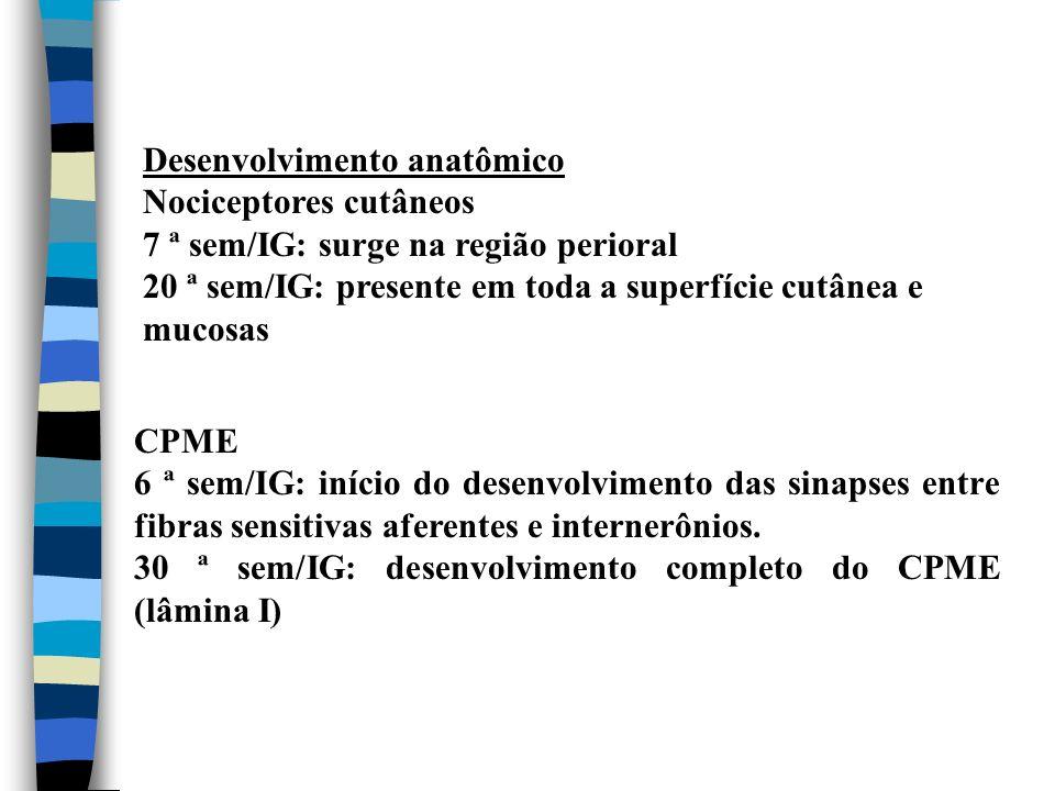 Desenvolvimento anatômico Nociceptores cutâneos 7 ª sem/IG: surge na região perioral 20 ª sem/IG: presente em toda a superfície cutânea e mucosas CPME
