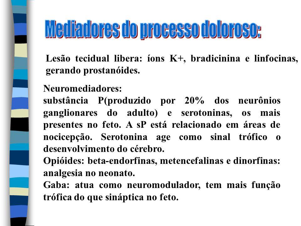 Lesão tecidual libera: íons K+, bradicinina e linfocinas, gerando prostanóides. Neuromediadores: substância P(produzido por 20% dos neurônios ganglion