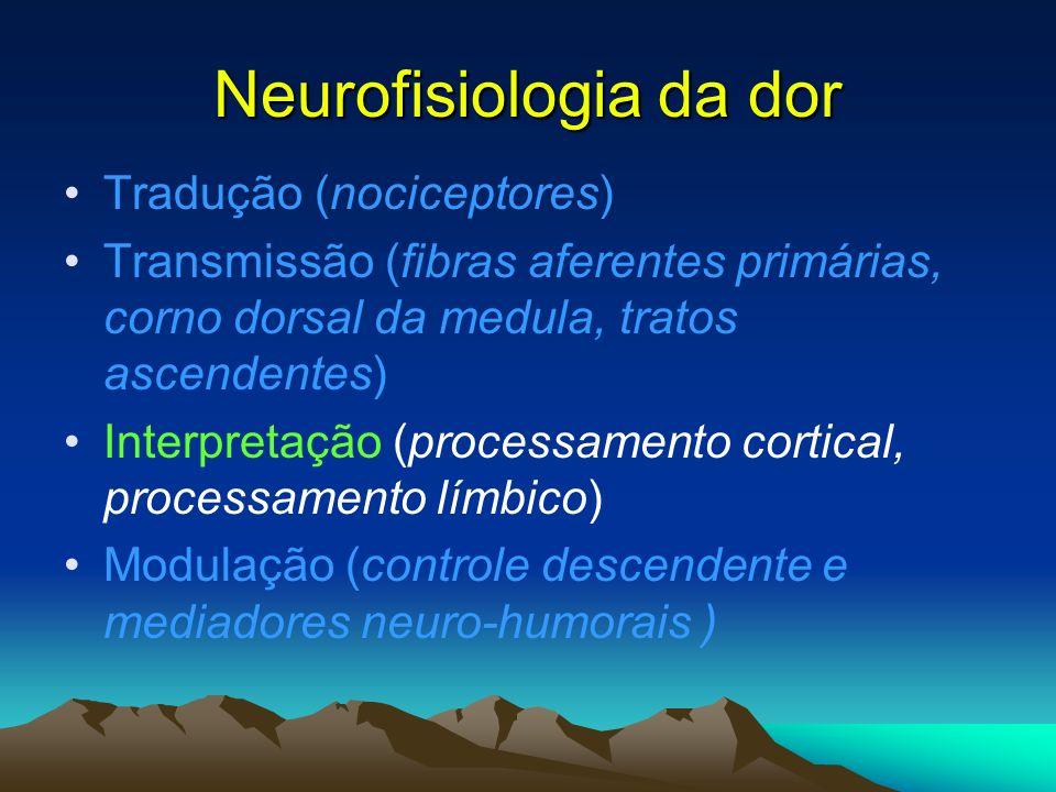 Neurofisiologia da dor Tradução (nociceptores) Transmissão (fibras aferentes primárias, corno dorsal da medula, tratos ascendentes) Interpretação (pro